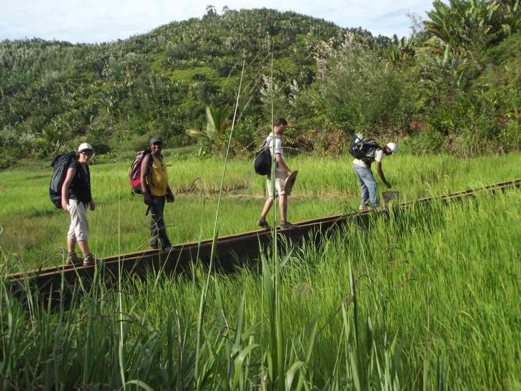Discovery tours toamasina (1)