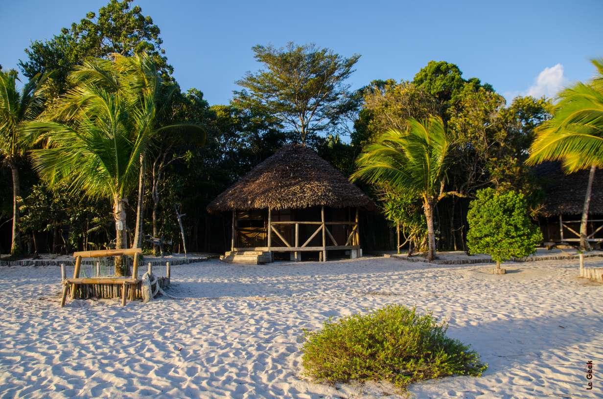 Jungles Nofy Pangalanes (2)