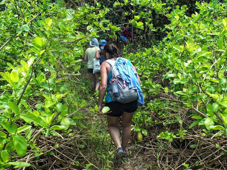 Randonnée Tamatave